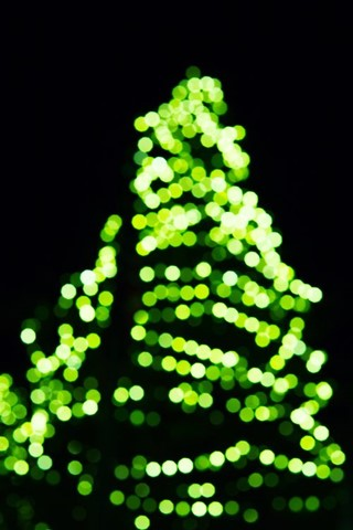 Christmas Tree bokeh lighting