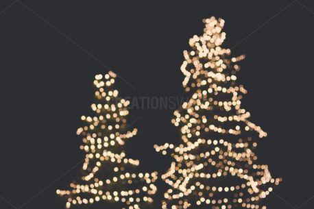 Bokeh Christmas Tree (61838)