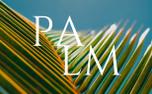 Palm Sunday (61939)