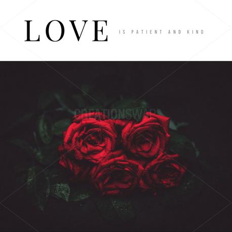 Love (63110)