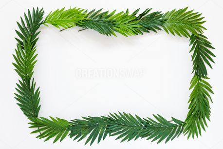 Palm leaves border (63300)