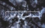 Trees Swaying Box (63364)