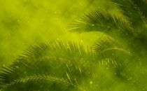 Green Palm Sunday Backdrop