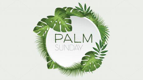 Palm Sunday (65049)