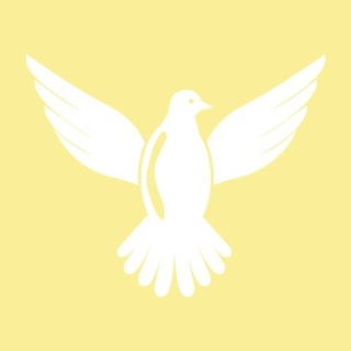 White dove icon