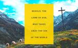 John 1:29  (65564)