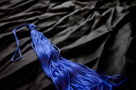 Blue Tassel  (66259)