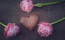 Heart and Fowers