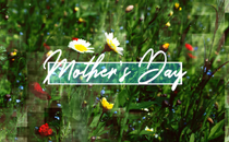 Mother's Day Title Background