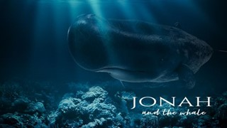 Jonah and the Whale Series