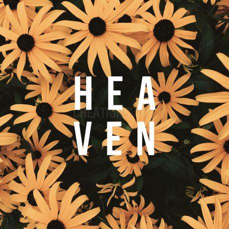 Heaven (68761)