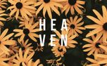 Heaven (68762)