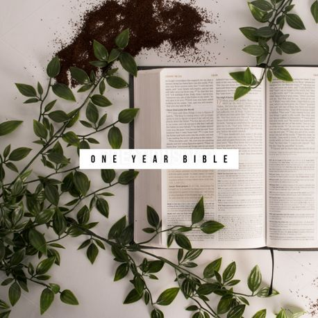 one year bible (69937)