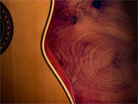 Guitar (7710)