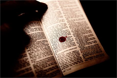 Jesus' Innocent Blood (7783)