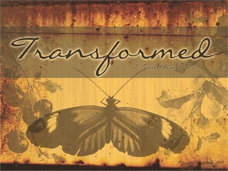 transformed (7786)