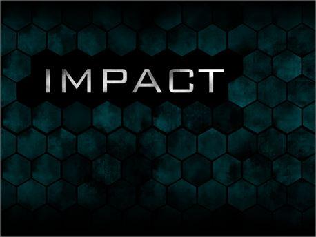 impact panels (7834)