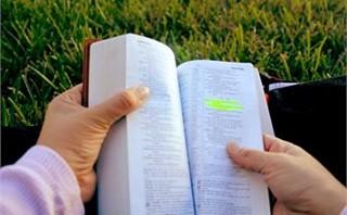 Scripture Reader