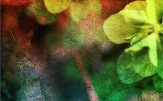 nature grunge backgrounds 2