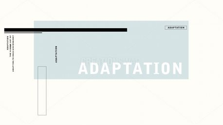 ADAPTATION (70569)