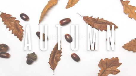 Fall & Autumn Slides Bundle (71308)