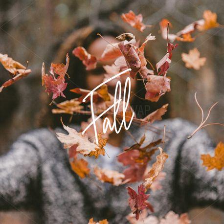 Fall (71462)