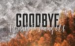 Colorful Fall Goodbye (71544)