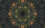 Fall Kaleidoscope Motion Loop (71643)