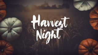 Harvest Night Slide