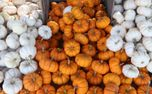 Small Pumpkins (72064)