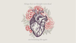 Breathing life again