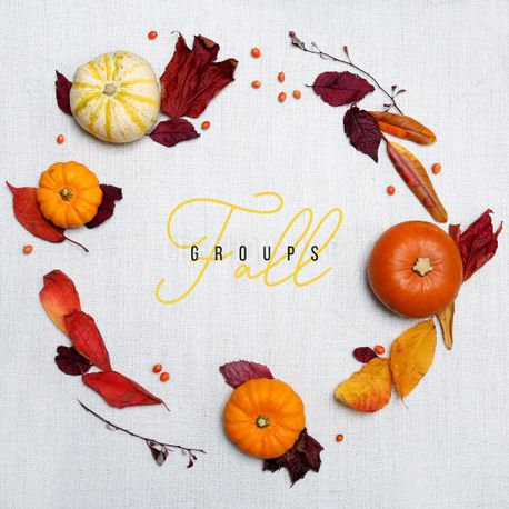 Fall Groups (72577)