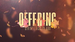 Thankful Fall (Offering)