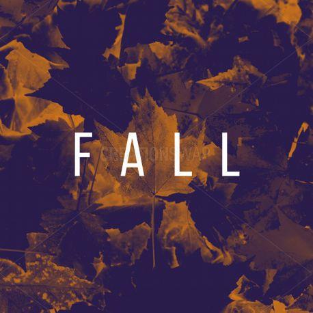 Fall (72978)