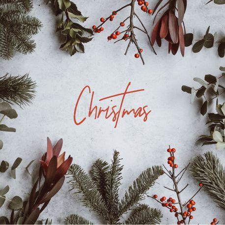 Christmas (73009)