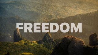 Freedom | Series Graphic