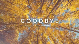 Fall Goodbye (Worm'sEyeView)