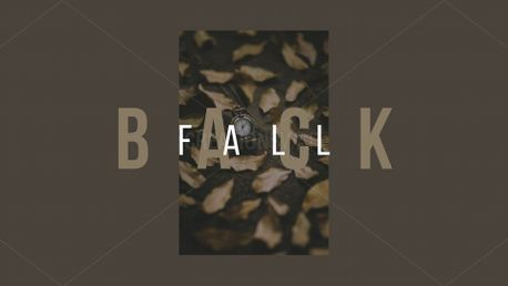 Fall back (73346)