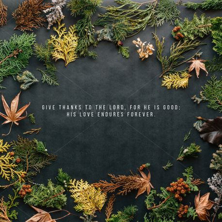 Give Thanks (73349)