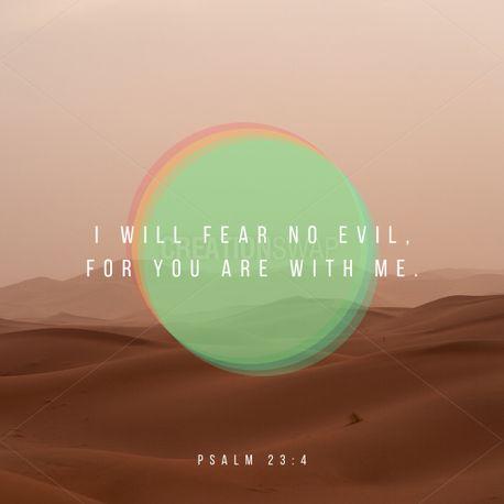 Fear no evil (73362)