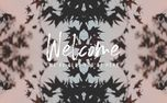 Fall Kaleidoscope - Welcome (73392)