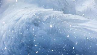 Christmas Angel Wing