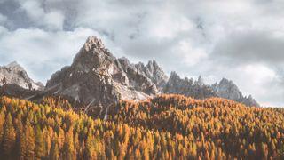 Fall Landscape Loop