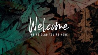 Leaves Welcome