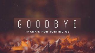 Fallen Leaves Goodbye