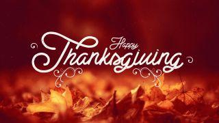 Thanksgiving Stills