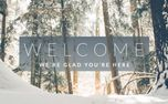 Winter Forest Welcome (73983)