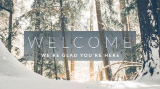 Winter Forest Welcome