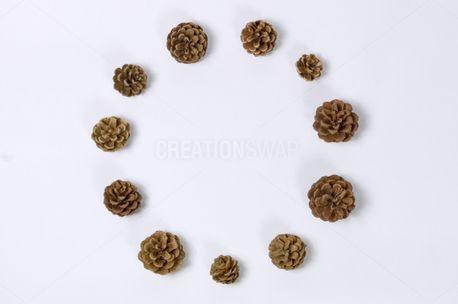 Circle of pine cones (74397)