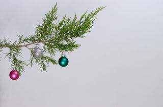 Cedar bough with ornaments